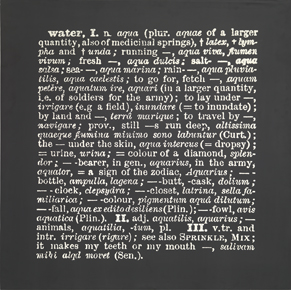 Joseph Kosuth : 'Titled (A.A.I.A.I.)' [water, Eng.-Latin] 1968