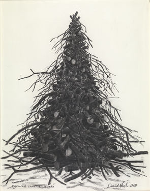 David Nash : Pyramid in the sticks